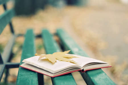 timber bench seat: Open book with leaf on it lying on the bench in autumn park