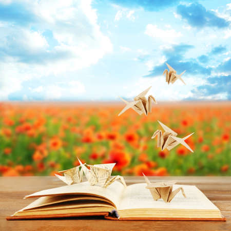 book background: Origami cranes on book on nature background