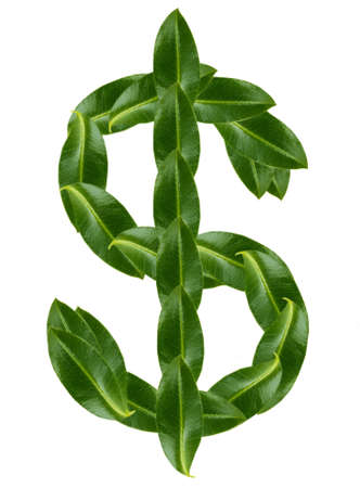 dollar sign: Dollar sign made of green leaves isolated on white Stock Photo