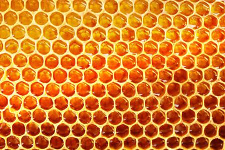 honeycomb: Honeycomb background