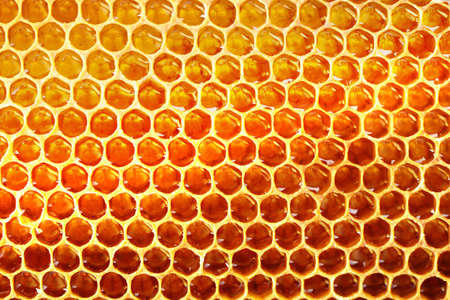 Honeycomb background