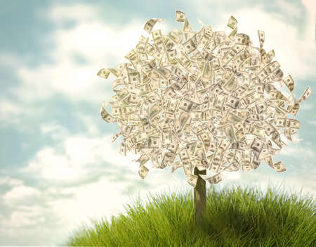 Money tree on natural background Stock Photo