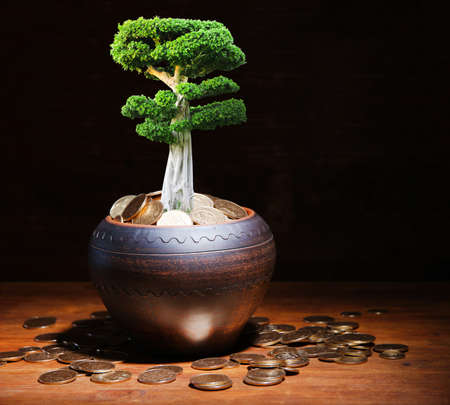 Green tree growing in ceramic pot full of coins on wooden table on dark background photo