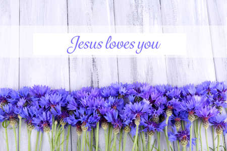 blue you: Beautiful cornflowers and text Jesus loves you on wooden background