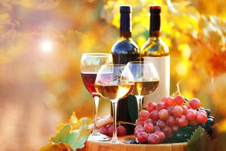 Tasty wine on wooden barrel on grape plantation background Standard-Bild