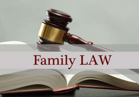 martillo juez: Mazo del juez en el libro y el derecho de familia texto sobre fondo gris