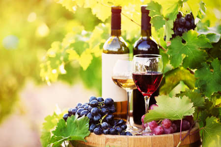 Tasty wine on wooden barrel on grape plantation background Stock Photo