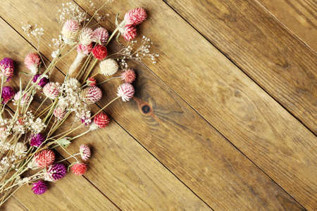 flores secas: Flores secas sobre fondo de madera rústica tablones