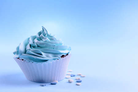 Delicious cupcake on blue  background photo