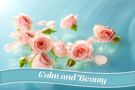 blue waters: Floating pink roses in light blue waters Stock Photo