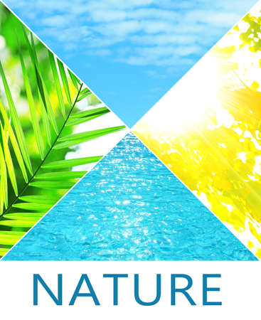 waterpool: Water, plant, sky and sun in collage, nature components concept
