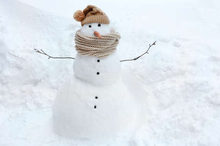 frosty the snowman: Funny Snowman