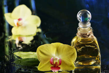 Orchid flowers with water drops and bottle of perfumes on dark colorful background photo