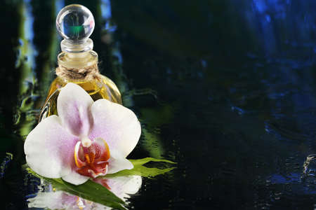 Orchid flower with water drops and bottle of perfumes on dark colorful background photo