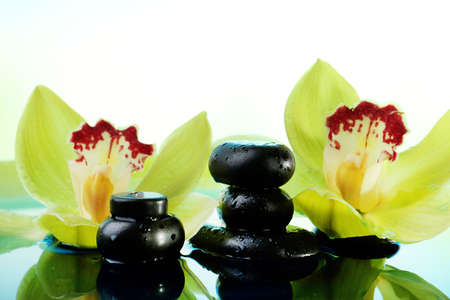 Spa stones with water drops and beautiful blooming orchid in water close-up photo
