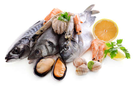 Fresh fish and other seafood isolated on white photo