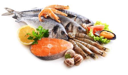 mariscos: El pescado fresco y otros productos del mar aislado en blanco
