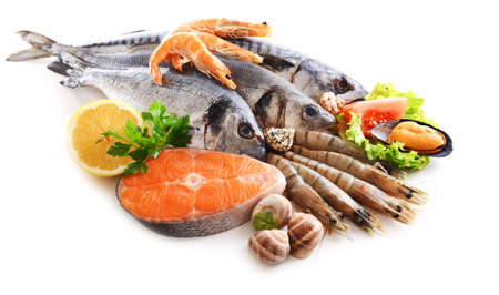 FRESH seafood: Fresh fish and other seafood isolated on white