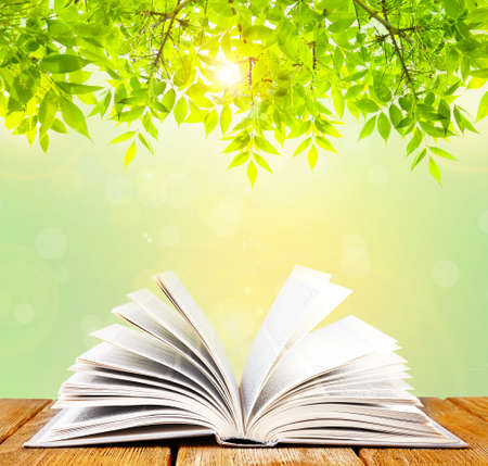 opened: Opened book on table on nature background Stock Photo