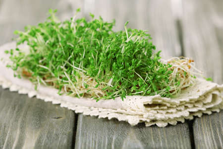 cress: Fresh cress salad on wooden planks background Stock Photo