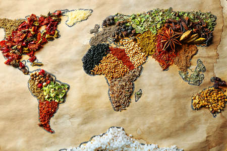 dried spice: Map of world made from different kinds of spices, close-up