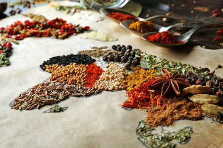 kinds: Map of world made from different kinds of spices, close-up