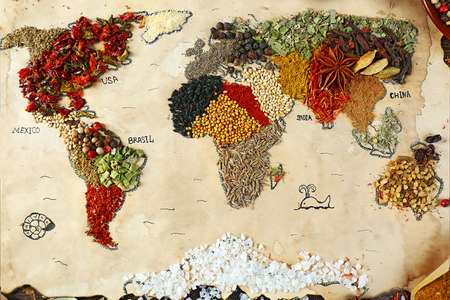 the natural world: Map of world made from different kinds of spices, close-up