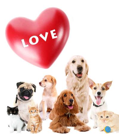 Nette Tiere mit großem Herzen auf hellem Hintergrund Standard-Bild - 39388878