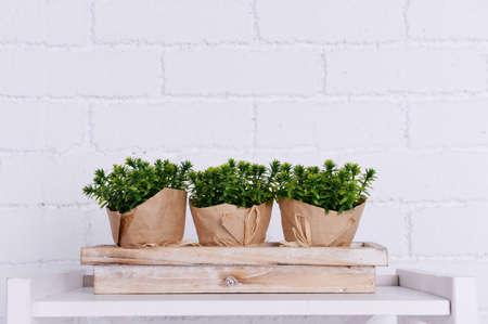 Drie potten van bloemen op houten tribune op tafelblad op witte bakstenen muur achtergrond Stockfoto