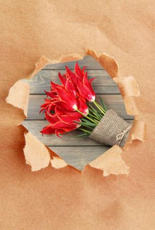 Gescheurd document gat met tulpen binnen achtergrond Stockfoto