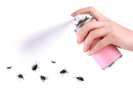 Plastic sprayer with insecticide and stinging insect isolated on white Stock Photo
