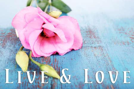Beautiful eustoma flower on wooden background, greeting card photo