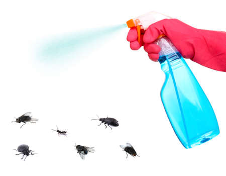 pest control: Plastic sprayer with insecticide and stinging insect isolated on white Stock Photo