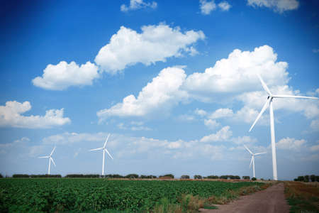 windmills: Windmills field