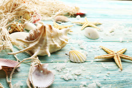 souvenir: Sea stars and shells on wooden background