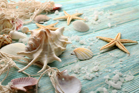 sea stars: Sea stars and shells on wooden background