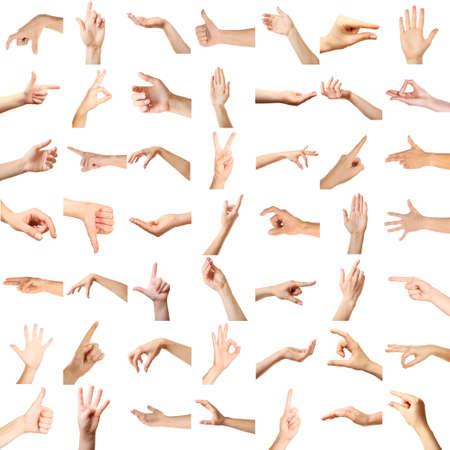 Collage de las manos mostrando diferentes gestos, aislado en blanco