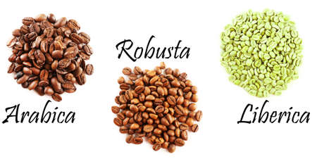 robusta: Different coffee beans isolated on white