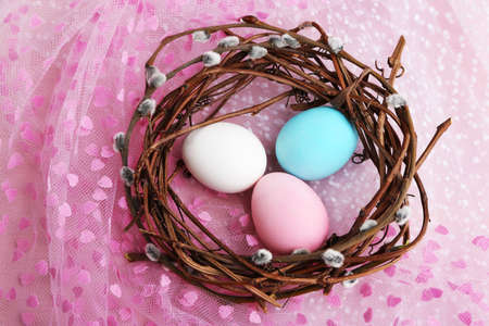 pink pussy: Bird colorful eggs in nest on bright background