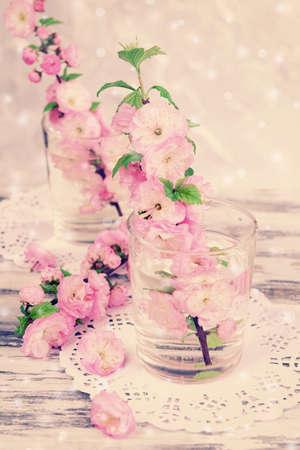 flor de cerezo: Flor de la fruta hermosa en vidrios en la mesa sobre fondo claro