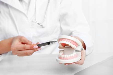 Jeune femme dentiste montrant modèle de dents humaines dans son lieu de travail, gros plan