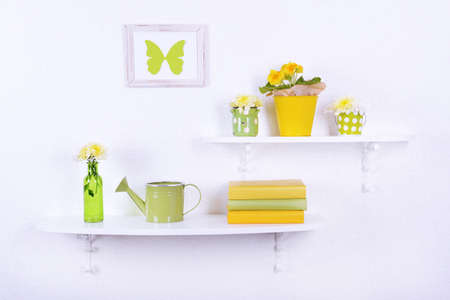 plant in pot: Flower on shelves on white wall background Stock Photo