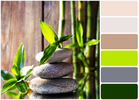 Spa stones and bamboo branches and palette of colors