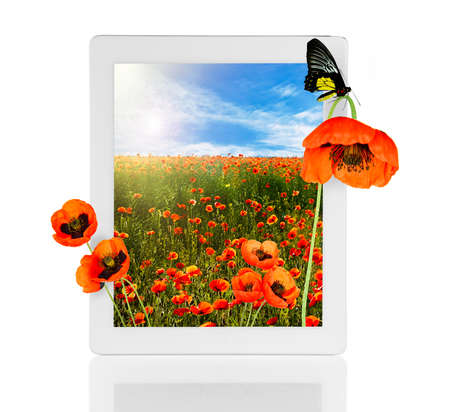 isolated on yellow: Tablet with nature wallpaper on screens isolated on white