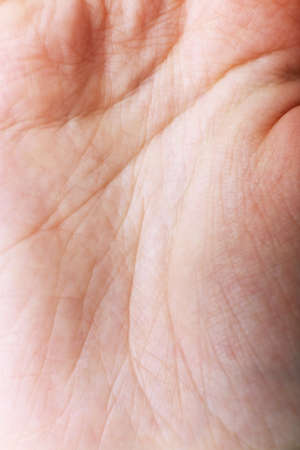 chiromancy: Closeup lines of human hand