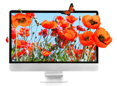 computer isolated: New modern computer with nature wallpaper on screens isolated on white