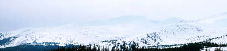 carpathian: Carpathian Mountains in wintertime