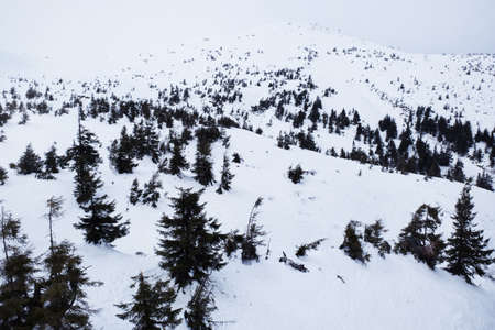 wintertime: Snowy mountains in wintertime