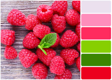 color palette: Ripe sweet raspberries on table and palette of colors