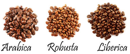 semilla de cafe: Diferentes granos de café aislados en blanco